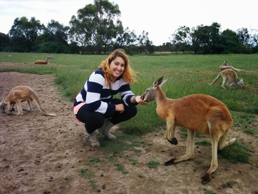 Emigrare in australia il racconto di chi ce l 39 ha fatta for Ospite inglese